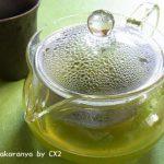 HARIO/ハリオの茶茶急須