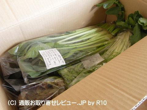 無農薬野菜到着