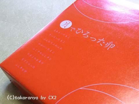 100106kashinoki1.jpg
