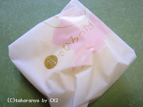 100106kashinoki3.jpg