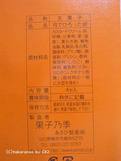 100106kashinoki5.jpg