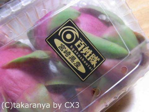 110906fruits1.jpg