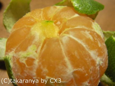110906fruits10.jpg