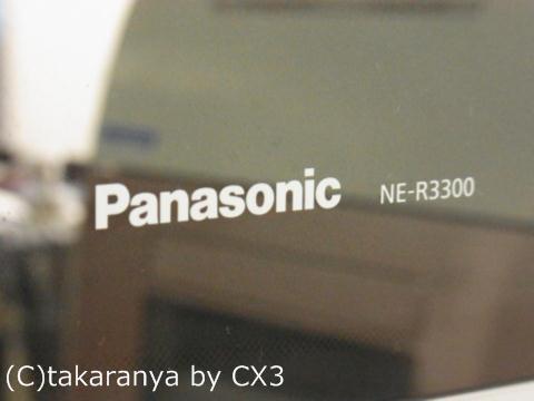 111005panasonic1.jpg