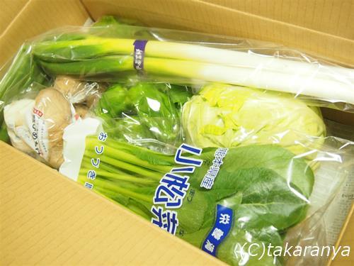 150207kyushu-yasai1.jpg