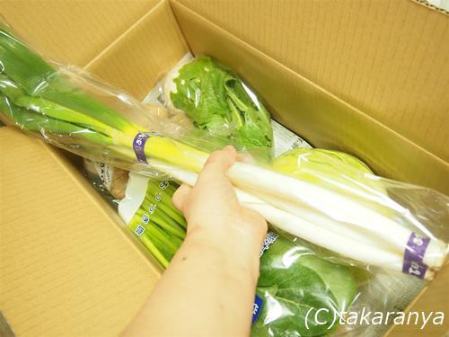 150207kyushu-yasai3.jpg