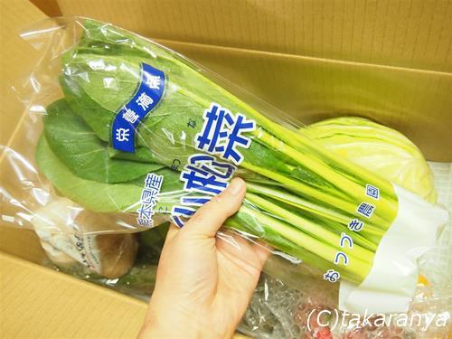 150207kyushu-yasai4.jpg