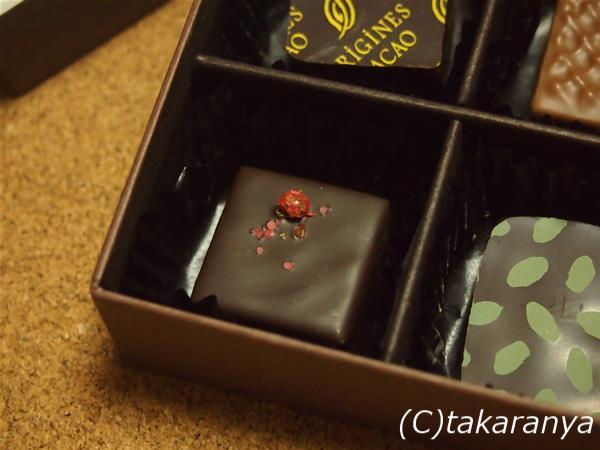 170130origines-cacao5.jpg