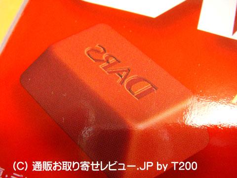 090122gyakudars4.jpg