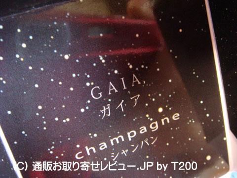 090202gaia5.jpg