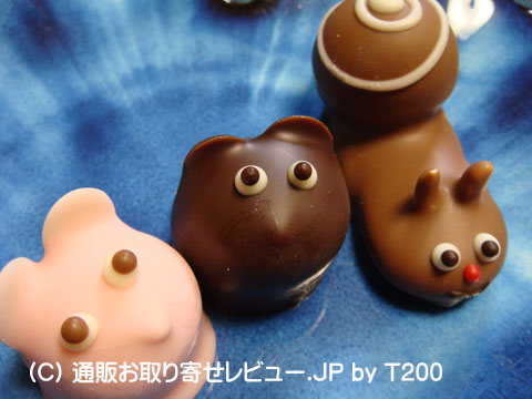 090206yosei1.jpg