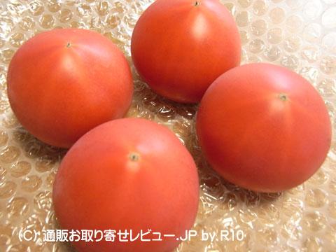 090527tomato2.jpg