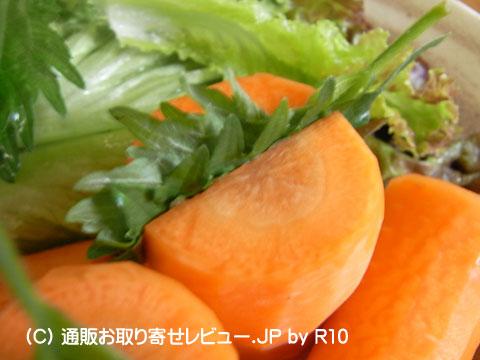 090528shiso3.jpg