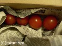 オイシックス ミニトマト
