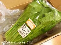 2010/04/100421oisix9