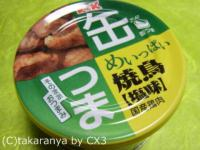 2011/01/110118kan1