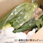 無農薬野菜のミレーお試しセット体験レビュー